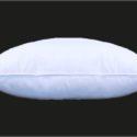 oreiller anti-acariens